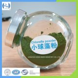 Chlorella Powder to People for Protein