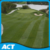 Anti-UV Artificial Golf Putting Green Turf G13