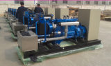 2019 Green Power 1000kVA Natural Gas Generator Set with Ce Approval