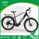 Wholesale Power Latest Design Mountain E Bike