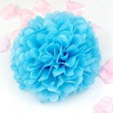 Wholesale Party Wedding Decoration Hanging Tissue Paper Pompoms POM Poms