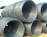Big Stock! Hot Rolled Cold Rolled Steel Wire Rod