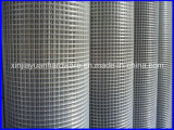 High Quality Best Price Welded Wire Mesh in Rolls