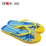 Hot Sale Custom Cheap Fashion Woman Flip Flop Flat Slipper