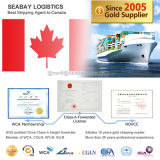 Shanghai Reliable Ocean Freight Forwarding to Toronto