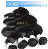 Human Hair Extension/Hair Style/Hair Loss