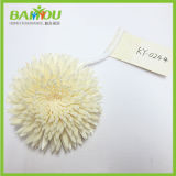 Competitive Price Sola Tip Ball