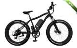 250W Fat Tire Best Price Electric Bike