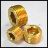 Brass Hexagon Socket Pipe Plugs
