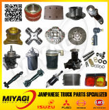 Over 800 Heavy Duty Truck Spare Parts