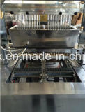 Jelly Candy Production -Best Selling