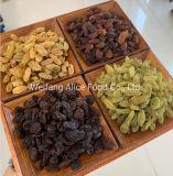 Wholesale Dried Fruits Strawberry, Cherry, Kumquat, Kiwi and Others