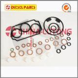 Diesel Repair Kits 14600-1120 for Ve Pump