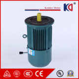 AC Induction Embr Three Phase Motor with Cast Iron Housing