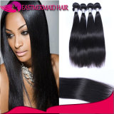 Factory Wholesale Brazilian Indian Peruvian Unprocessed Human Virgin Hair