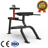 Plate Loaded Back Extension Hammer Strength Gym Equipment