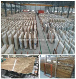 Natural Polished Marble Slab with Competitive Price