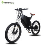 2017 New Big Power 2000W E-Bike Electric Motorcycle