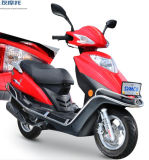 Sanyou Holding Group 125cc-150cc Asia Market Scooter Ygz