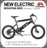 20 Inch Electric Mountain Bike 7 Speed Disc Electric Bicycle