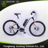 High Speed Middle Drive Electric Bike (TDF93L)