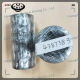 Excavator Travel Motor Bearing 4387383 for Zax200 Zax210-3