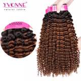 New Arrived Kinky Curly Brazilian Human Hair Ombre Hair Weft
