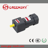GS High Efficient 220V AC Reversible 120W 90mm Gear Motor