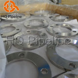 Carbon/Stainless Steel Forged Wn/Blind/So/Flat Flanges