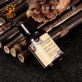 Wholesale Hotel Amenities Private Label Shampoo 30ml Bottle Natural Essence Hotel Shampoo Dispenser