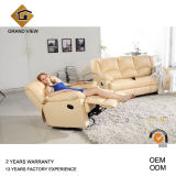 Classical Furniture Leather Living Room Sofa (GV-RS495)
