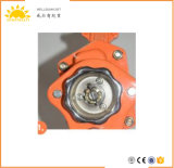 2018 High Quality )&Best Price Ce GS TUV Approved 0.75-9t Lever Hoist/Hoists Cranes