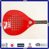 Made in China Beautiful Low Price Paddle Tennis Racket