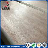 Hot Sale Bintangor Wood Veneer Commercial Plywood with Cheap Pirce