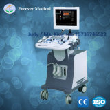 3D Trolley Color Ultrasound Scanner with Pw