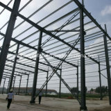 Life Long Steel Structure Building for Warehouse, Storage and Chicken Farm