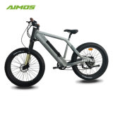 Competitive Price Green Power 1000W Ebike/Electric Bike with Hidden Battery