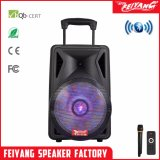 Feiyang/Temeisheng Portable Speaker Battery Wireless Bluetooth Speaker F12-06
