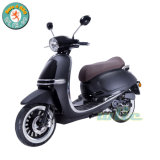 125cc Scooter Engine Gas Snow Motorbike Swan 125 (Euro 4)