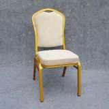 Exquisite Wedding and Event Chair (YC-ZL07-21)