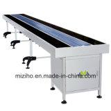 Food Conveyor Belt with Stainless Steel 1 Meter to 10 Meter Conveyor