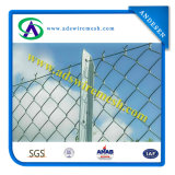 Shool Playground Chain Link Fence with Good Quality