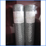 Hot Dipped Galvanized Fencing Wire Mesh