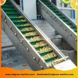 Engineering Plastic Scraper Lifting Conveyor Machine for Fruit and Vegetable