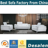 Living Room Genuine Leather Sofa in Home Furniture (C40)