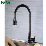 Flg Orb Pull out Spray out Kitchen Faucet/Tap/Mixer