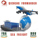 Amazon USA Shaoxing LCL Cargo Forwarder 20FT Shipping Container Price From China to Sea Freight Us