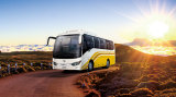 Brand New Automobile 60 Seater Chinese Luxury Bus Price of a New Coach for Sale