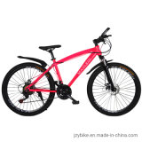 Mountain Bike Bicycle MTB with Low Price