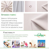 Wholesale Ripstop Nylon Spandex Fabric / Polyamide Grid Elastane Fabric/Ripstop Stretch Nylon 20d Fabric